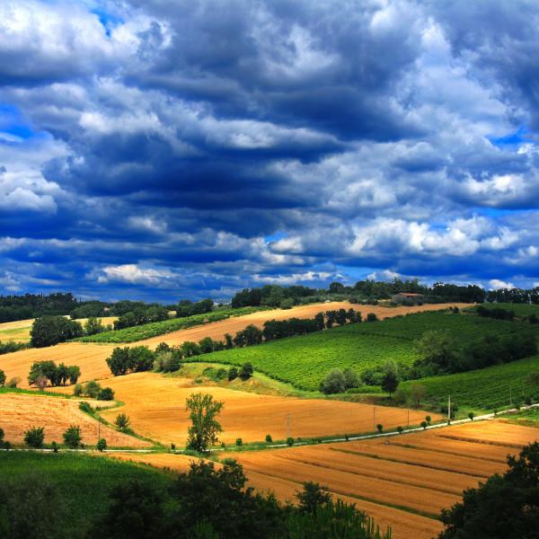 pila-winery-landscape-img_4594-adj